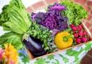 importanta legumelor